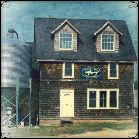 Original Dogfish Head production facility, Nassau Commons, 1997